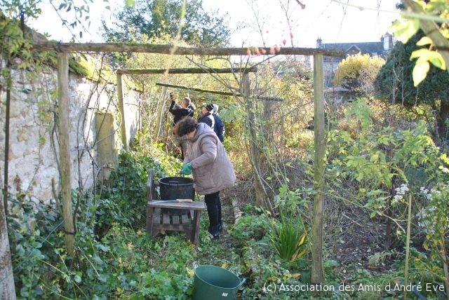 les tailleurs taillent et Sylvie, courageuse, réduit toutes les tiges en petits tronçons pour faciliter l'évacuation des déchets